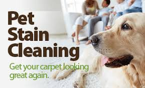 r r carpet cleaning houston 299 specials