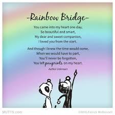 rainbow bridge pet loss grief pet grief