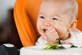 Gợi ý thực đơn ăn dặm cho bé 8 tháng kích thích trẻ mau ăn chóng ...