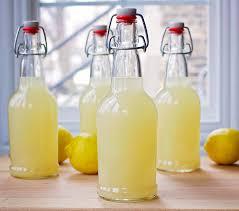 lacto fermented lemonade beets bones