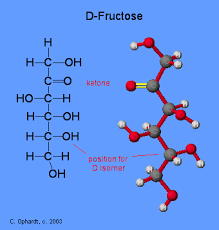 carbohydrates fructose