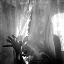 Abe Vigoda: Crush Album Review | Pitchfork