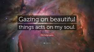 """michelangelo quote """"gazing on beautiful things acts on my soul"""