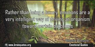 rather than being a luxury emotions are a very intelligent way of