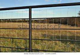 Steel Crossfencing Fence Posts Square Wire Stock Photo Edit Now 1144111640