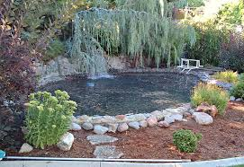 Pond Safety Net Protect A Pond By Katchakid