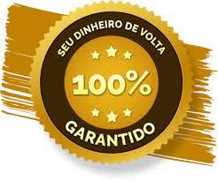 Poderoso Plugin 50 TOP BLOG PRO- SEU BLOG NO AUTOMÁTICO MARKETING ...