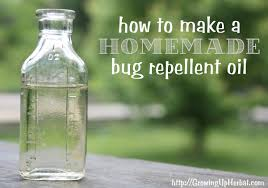 how to make homemade bug repellent oil