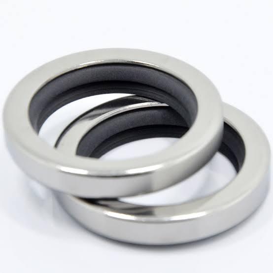 Hasil gambar untuk gambar dual lip seal