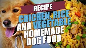 vegetable homemade dog food recipe