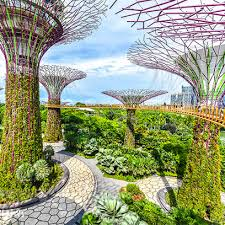 singapore garden by the bay rmg tours
