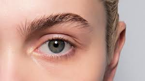 how to get thicker eyebrows in a few