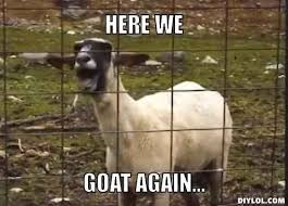 goat quotes for every occasion goats funny goat memes farm