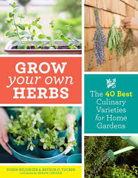 grow your own herbs the 40 best