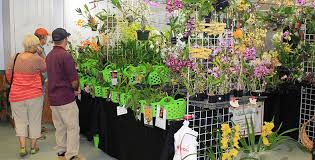 announcing the 32nd annual home garden