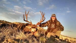 New Mexico Elk Mule Deer Hunt 84 Hunt Nation