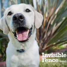 Invisible Fence Of Susquehanna Valley Home Facebook