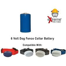 Extreme Dog Fence Collar Battery For Underground Electric Dog Fence Collar Receivers 6 Volts Continue To The Product At The I Dog Fence Dogs Dog Training