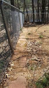 Dog Digging Prevention Brick Pavers Dog Backyard Dog Yard Dog Fence