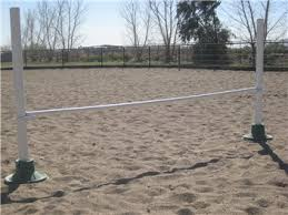 miniature horse jumps and poles how to