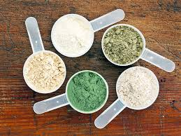 the 7 best protein powders for weight loss