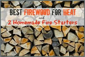homemade fire starters
