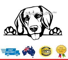 Beagle Peeking Dog Car Decal Vinyl Sticker Beagle Hound Dogs Ebay