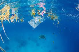 El plástico supone el 95% de los residuos del Mediterráneo ...