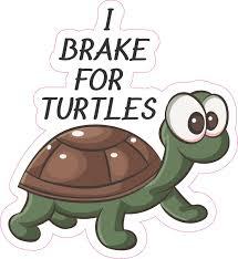 5 25in X 6in I Brake For Turtles Vinyl Sticker Car Truck Vehicle Bumper Decal Ebay