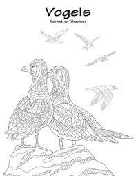 Vogels Kleurboek Voor Volwassenen 1 By Nick Snels Paperback