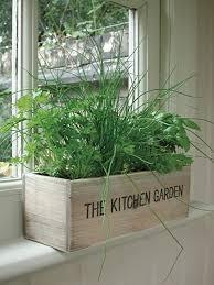 indoor herb kit garden wooden pots