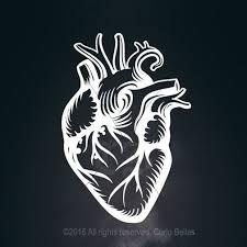 Anatomical Heart Vinyl Decal Heart Vinyl Heart By Curiobellas Human Heart Tattoo Heart Stencil Anatomical Heart