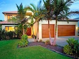 palm tree landscaping ideas front yard