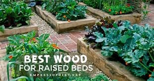 best wood for raised garden beds