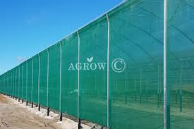 Quality Windbreak Net Manufacturer And Supplier From China Agrow