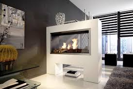 double sided electric fireplace insert
