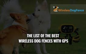 Best Wireless Dog Fence With Gps 2020 Reviews Faq S