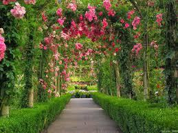 دليل أفضل الحدائق في مدينة جدة المرسال