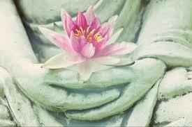 lotus flower buddhism yoga meditation stock vector lotus flower
