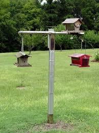 A Bird Feeding Station That Bites