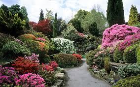 rock garden at leonardslee gardens