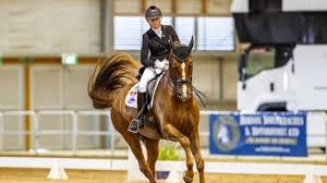 Top riders make their mark on first day of NZ Dressage Champs | Stuff.co.nz