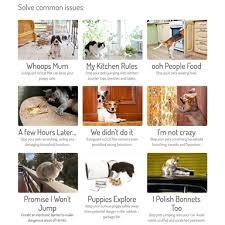 Sureguard Electronic Pet Training Mats House Pack Bunnings Warehouse