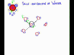 self ionization of water you