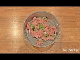 homemade raw dog food recipe easiest