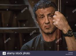 SYLVESTER STALLONE in RAMBO: LAST BLOOD (2019), directed by ADRIAN ...