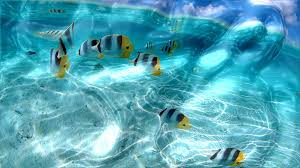 watery desktop 3d free live wallpaper