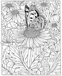 Kleurplaten Volwassenen Vlinders Clarinsbaybloor Blogspot Com