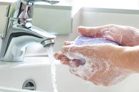 Washing your hands is only the first step | Homes | Lifestyles ...