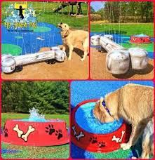 59 ideas for diy dog playground ideas